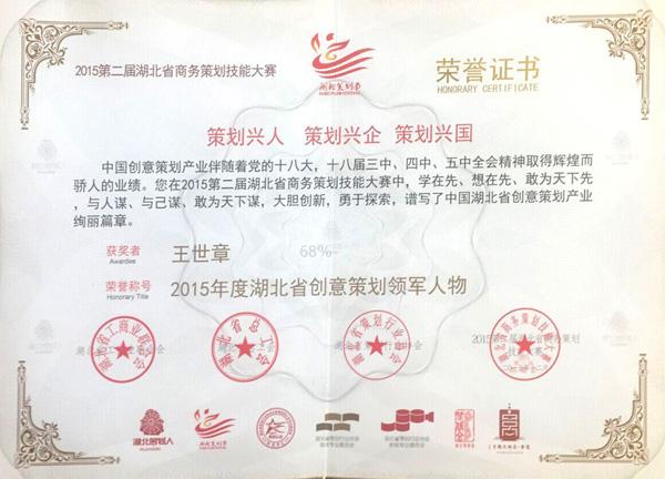 2015年度湖北省创意策划领军人物